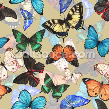 Butterfly Pattern Wallpaper Wall Murals