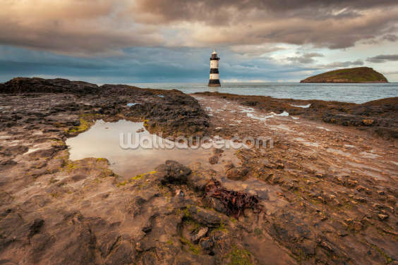 Penmon & Puffin Island Wallpaper Wall Murals