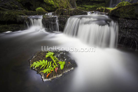 Scaleber Force Yorkshire Wallpaper Wall Murals