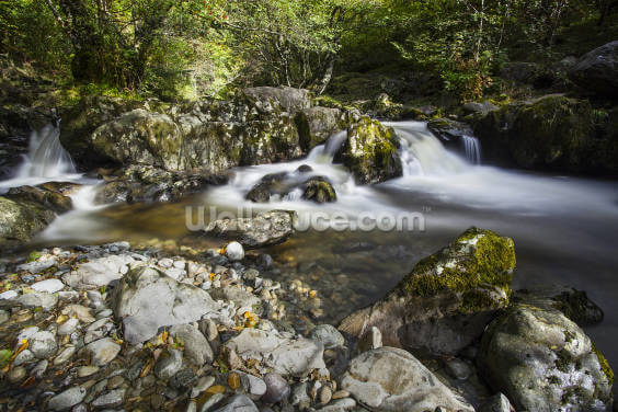 Aira Falls Lake District Wallpaper Wall Murals