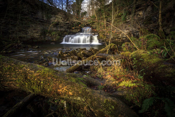 Cotter Force Yorkshire Wallpaper Wall Murals