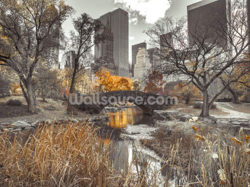 Water Stream at Central Park Wallpaper Wall Murals