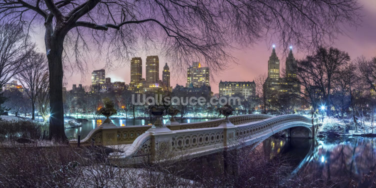 Central Park with Manhattan Skyline Lights Wallpaper Wall Murals