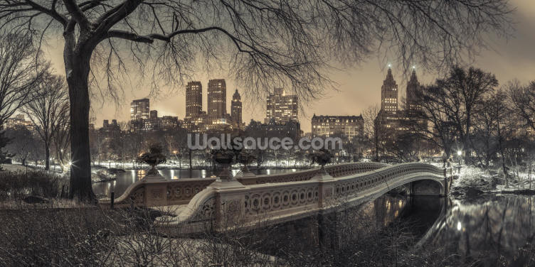 Central Park with Manhattan Moody Lights Wallpaper Wall Murals