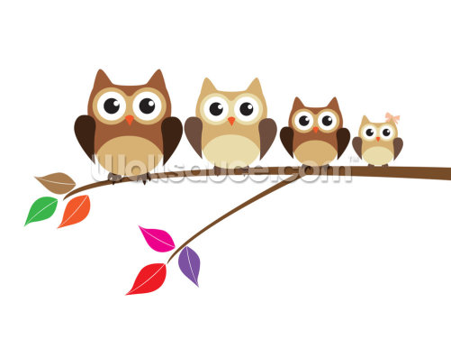 Owl Family Wallpaper Wall Murals