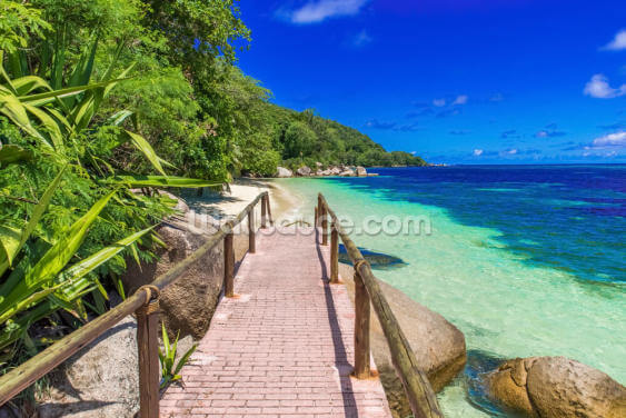 Path at Paradise Coast Wallpaper Wall Murals