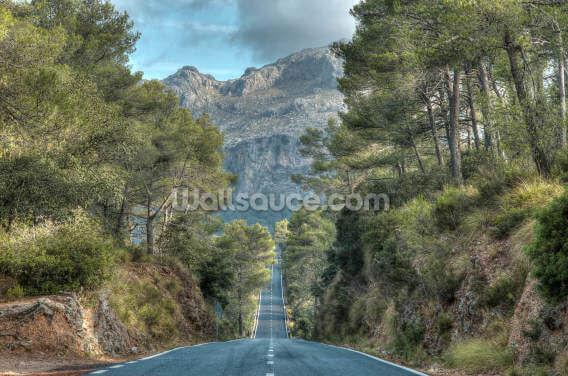 A Road Through the Majorcan Countryside Wallpaper Wall Murals