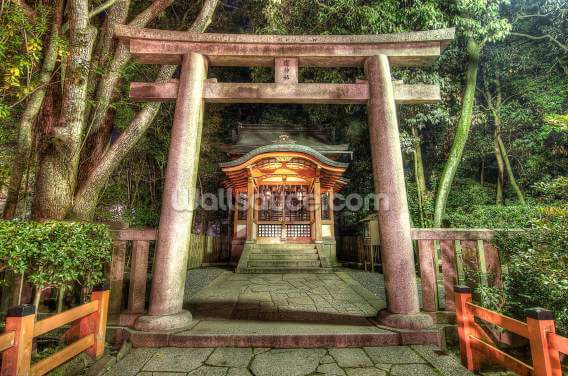 Shrine at Maruyama Park, Kyoto Wallpaper Wall Murals