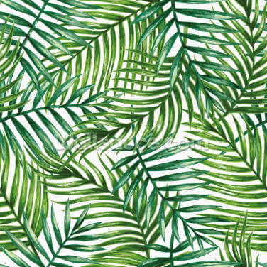 Watercolor Tropical Palm Leaves Wallpaper Wall Murals