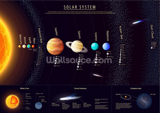 Detailed Solar System Topology Wallpaper Wall Murals