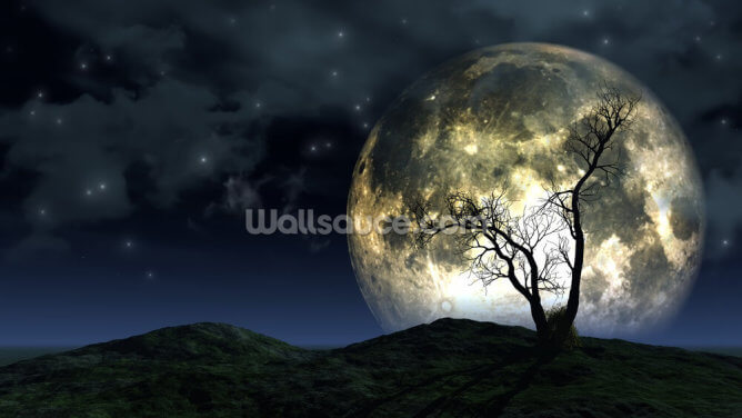 Tree and Moon Background Wallpaper Wall Murals