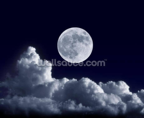 Full Moon at its Perigee Wallpaper Wall Murals