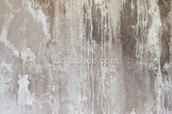 Grey Texture of Concrete Wallpaper Wall Murals
