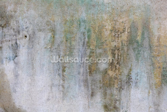 Concrete Patina Wallpaper Wall Murals