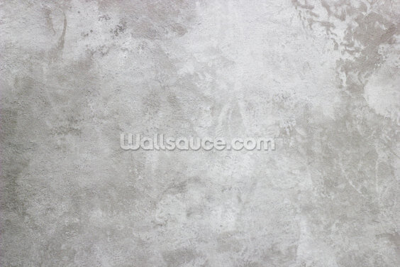 Texture of Plaster Wallpaper Wall Murals