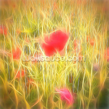 Light Papaver Wallpaper Wall Murals