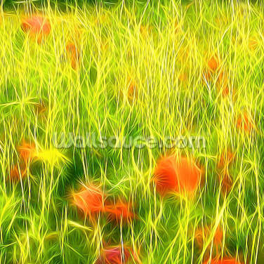 Light Poppy Meadow Wallpaper Wall Murals