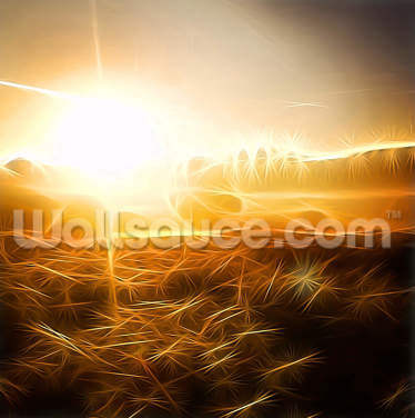 Light Rays Over The New Forest Wallpaper Wall Murals