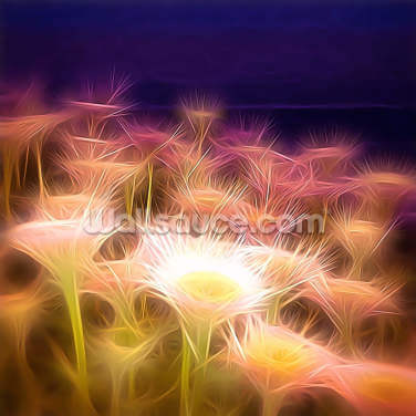 Light Seaside Daisy Wallpaper Wall Murals