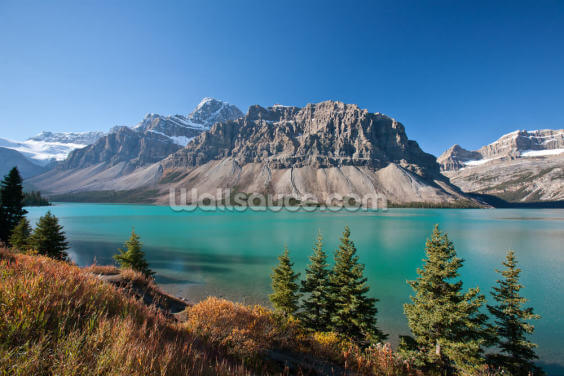 Beautiful Bow Lake, Alberta Wallpaper Wall Murals