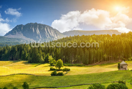 Beautiful Alpine Scenery Wallpaper Wall Murals