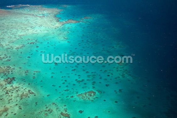 Speckled Barrier Reef Wallpaper Wall Murals