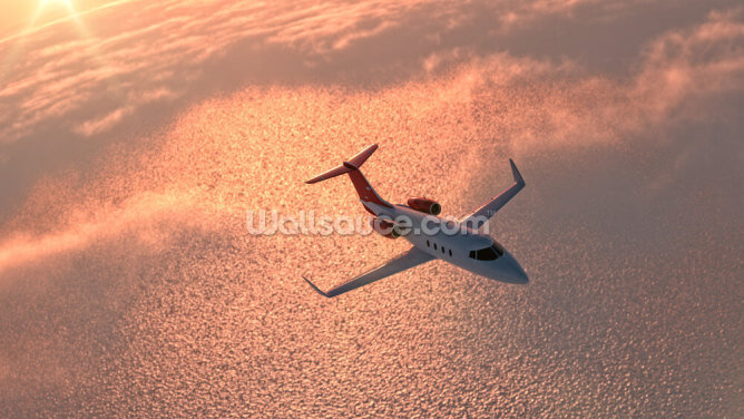 Private Jet at Sunset Wallpaper Wall Murals