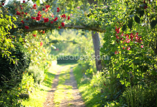 Rose Garden Wallpaper Wall Murals