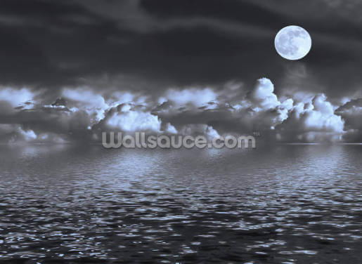 Moon Seascape Wallpaper Wall Murals