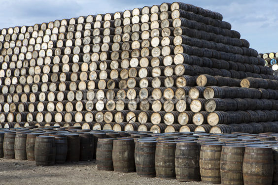 Whisky Cask Stack Wallpaper Wall Murals