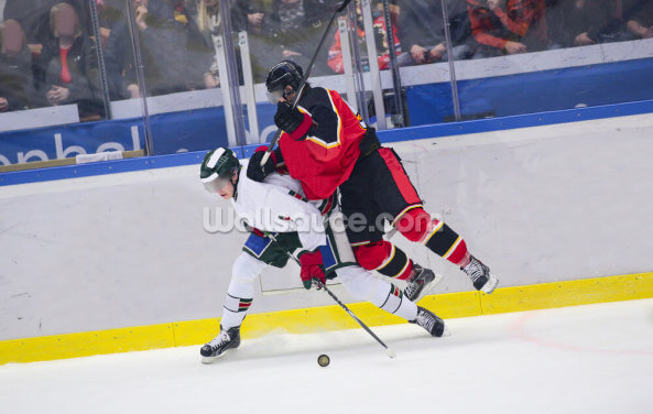 Ice Hockey Heavy Tackle Wallpaper Wall Murals