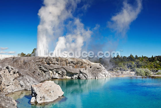 Pohutu Geyser Wallpaper Wall Murals