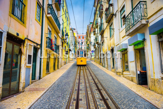 Lisbon Old Town and Tram Wallpaper Wall Murals