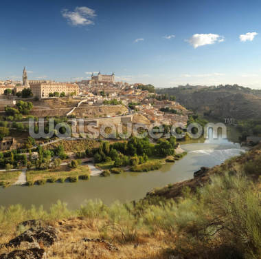 View of Toledo Wallpaper Wall Murals