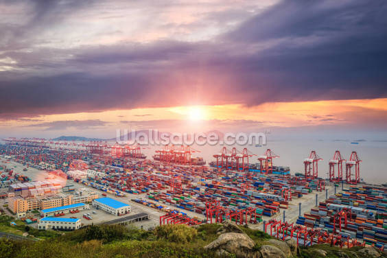 Port of Shanghai Wallpaper Wall Murals
