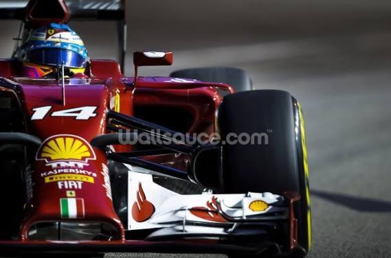 Fernando Alonso Wallpaper Wall Murals