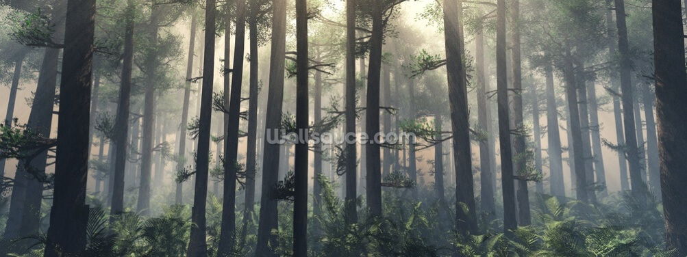 Trees in the Fog Wallpaper Wall Murals