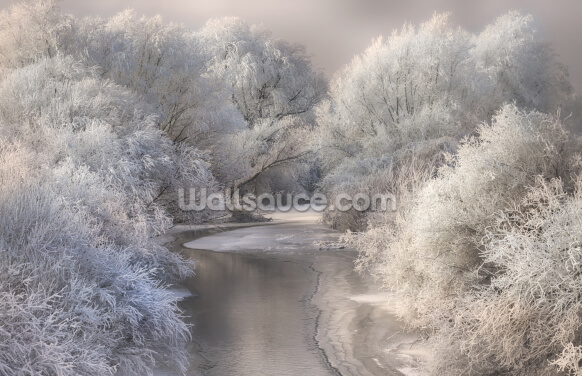 Winter Trees Wallpaper Wall Murals