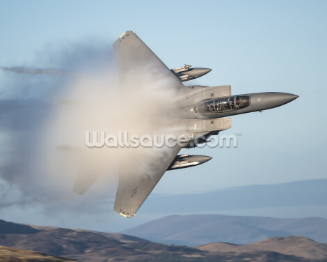 F18 Fighter Wallpaper Wall Murals
