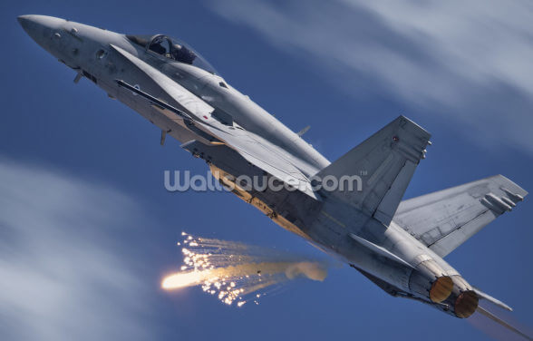 F 18 Finland Air Force Wallpaper Wall Murals