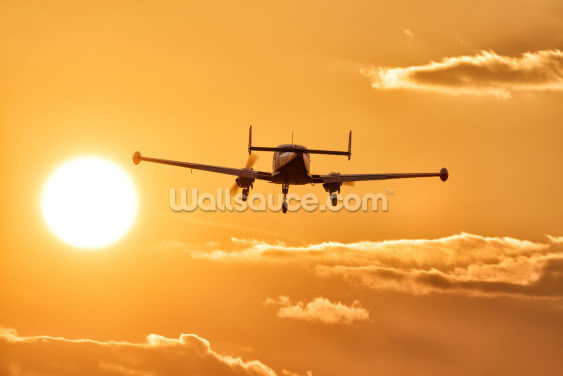 Flying into the Sun Wallpaper Wall Murals