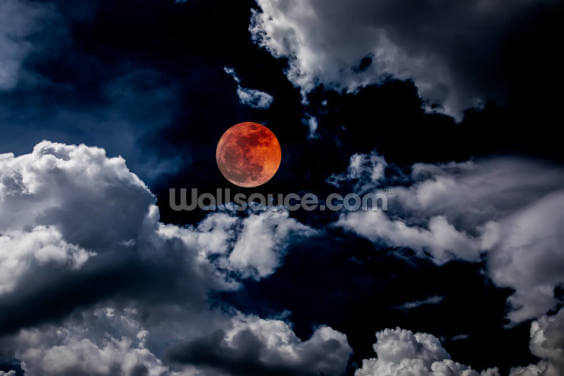 Red Eclipse Wallpaper Wall Murals