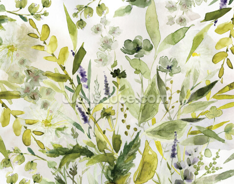 Olive Green Plants Wallpaper Wall Murals
