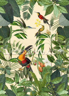 Tropical Birds in a Jungle Wallpaper Wall Murals