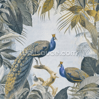 Fantastic Peacock Kings Wallpaper Wall Murals