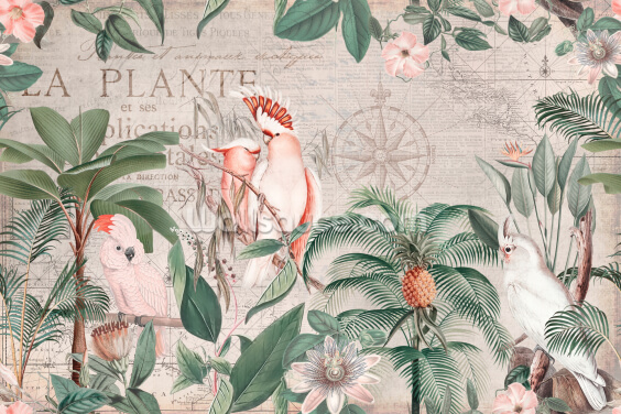 Vintage Cockatoo Jungle Wallpaper Wall Murals