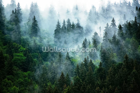 Misty Mountain Landscape Wallpaper Wall Murals
