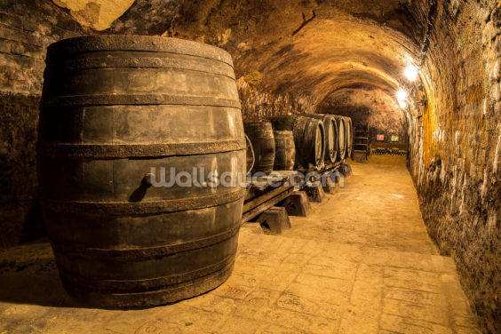 Old Wooden Barrels in the Wine Cellar Wallpaper Wall Murals
