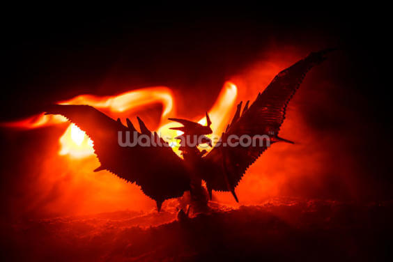 Wings of Fire Wallpaper Wall Murals