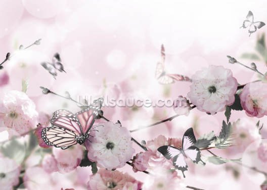 Blossom Butterflies Wallpaper Wall Murals